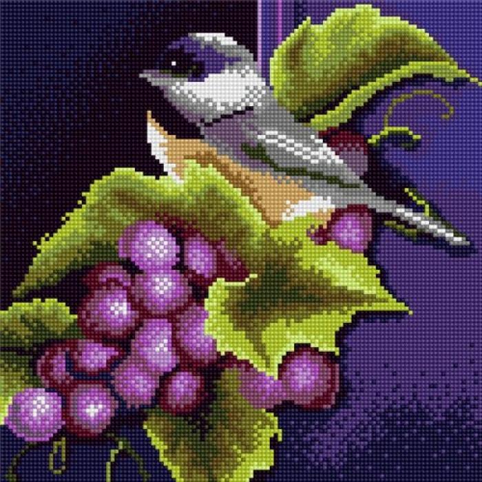 Набор алмазной живописи с подрамником Империя бисера арт.СК-306(П) Птичка на винограде 30х30 см