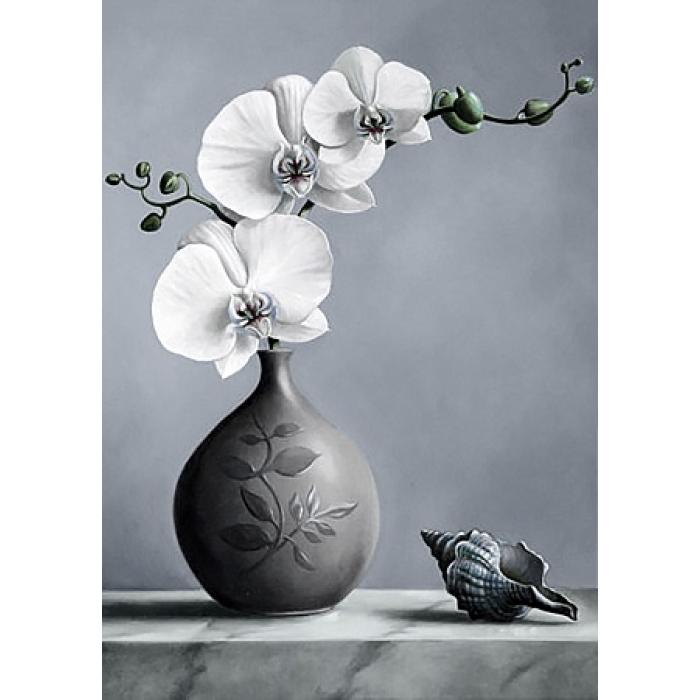 Алмазная мозаика на холсте ГРАННИ арт.Ag4643 Белая орхидея 27х38см
