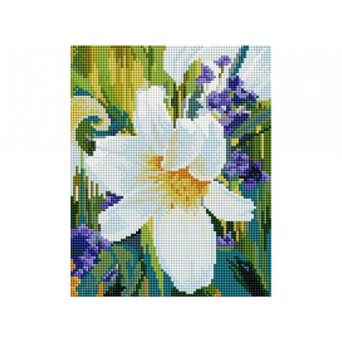 Набор Белоснежка для изготовления картин со стразами арт.БЛ.012-ST-PS Лилия 20х25см