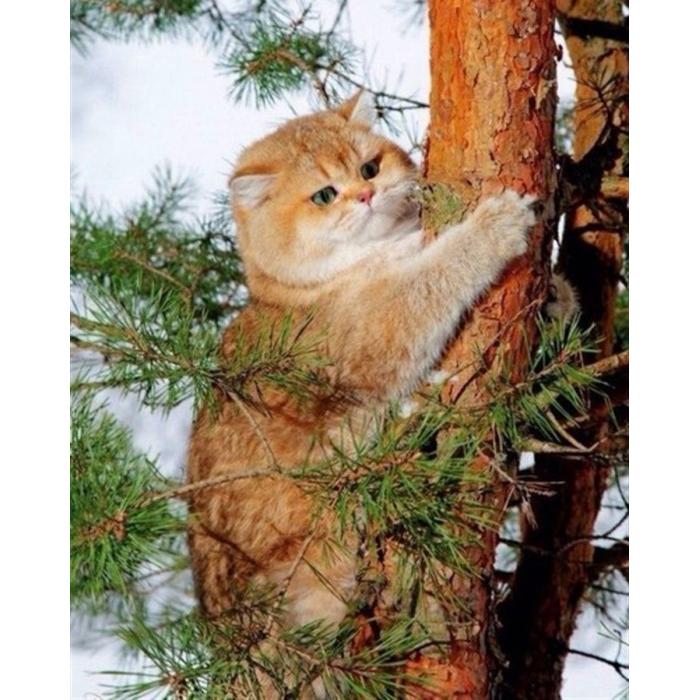 Алмазная мозаика Ah05521 Кот на дереве 40х50