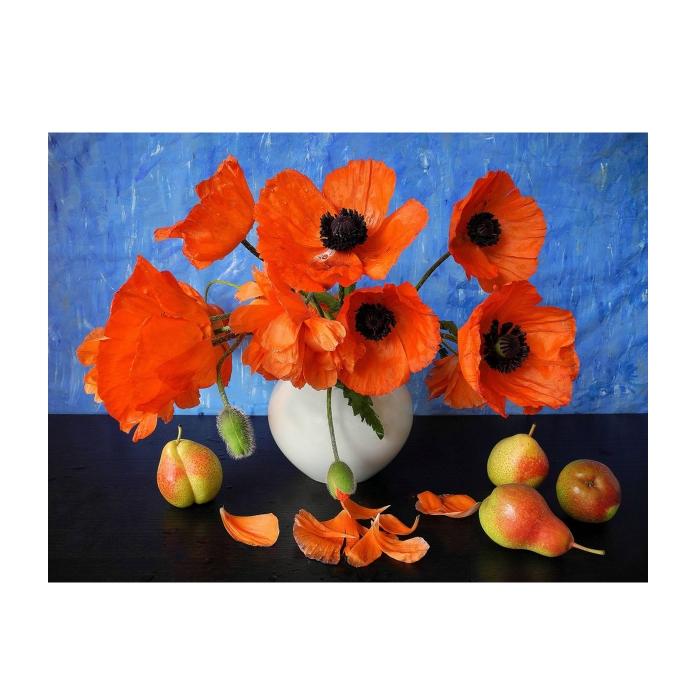 Картина по номерам с цветной схемой на холсте Molly арт.KK0635 Красные маки (18 цветов) 30х40 см
