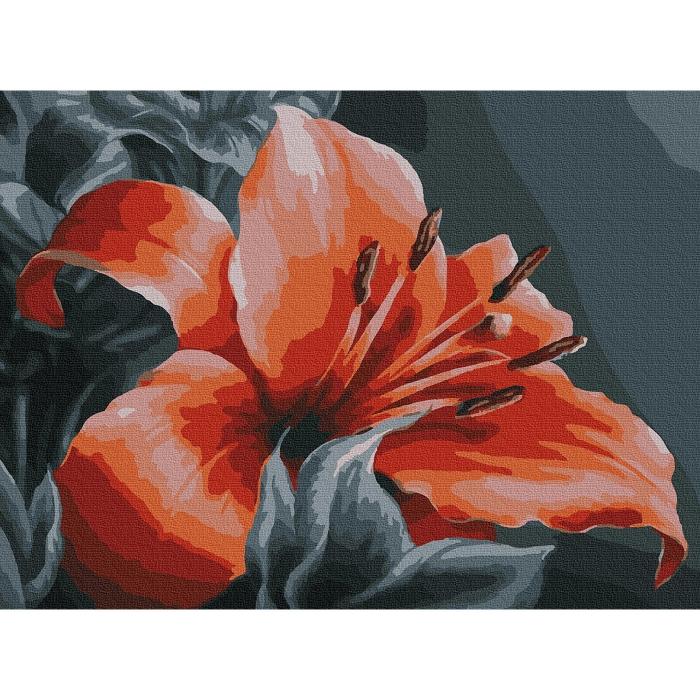 Картина по номерам с цветной схемой на холсте Molly арт.KK0669 Оранжевая лилия 30х40 см