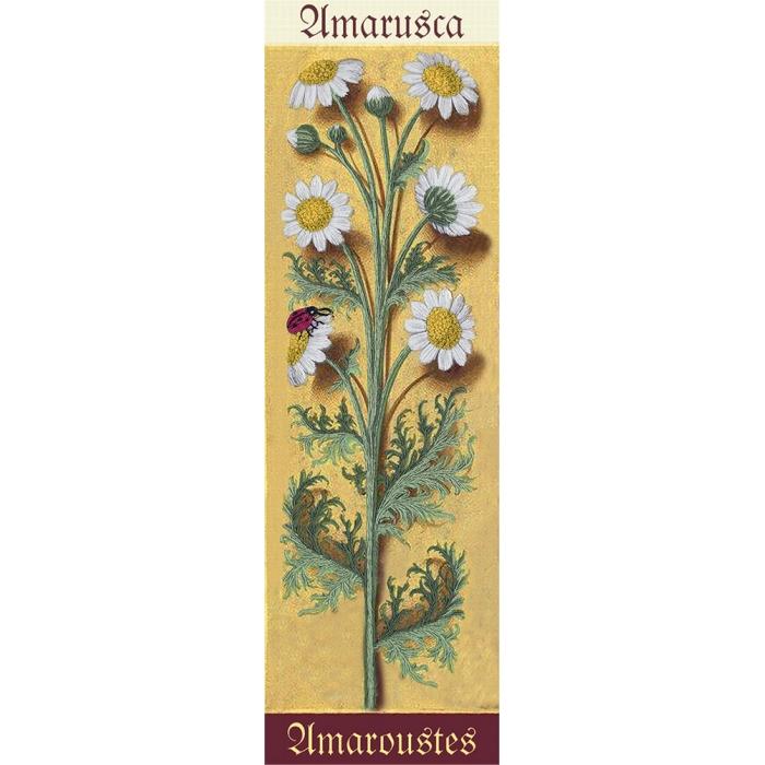 """Набор для вышивания PANNA """"Живая картина"""" арт. JK-2119 Ботаника. Ромашка 7х24,5 см"""
