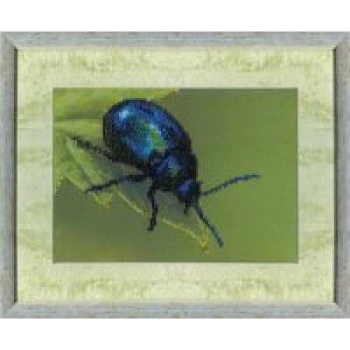 Набор для вышивания бисером ЧАРИВНА МИТЬ арт.Б-528 Жук 19,5х14,5 см