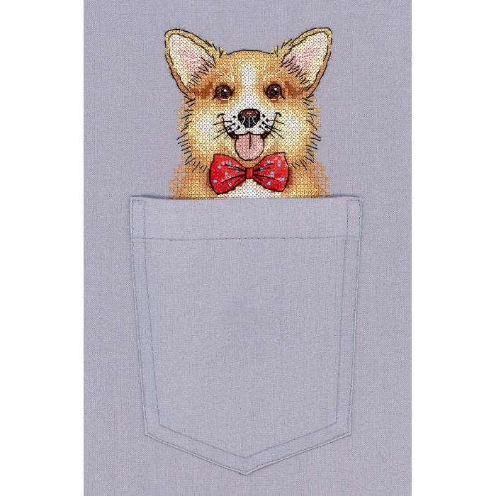 Набор для вышивания ЖАР-ПТИЦА арт.В-244 Рыжий джентльмен 9х9 см