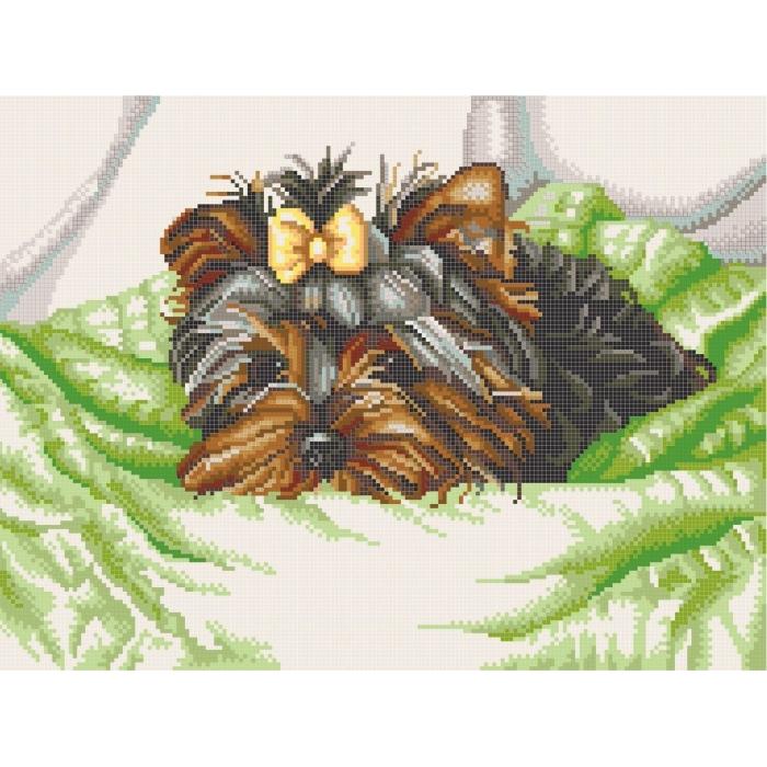 Рисунок на канве КОНЁК арт. 7802 Йоркширский терьер 29х39 см