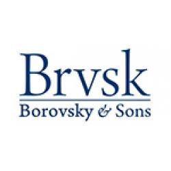 Borovsky-Sons