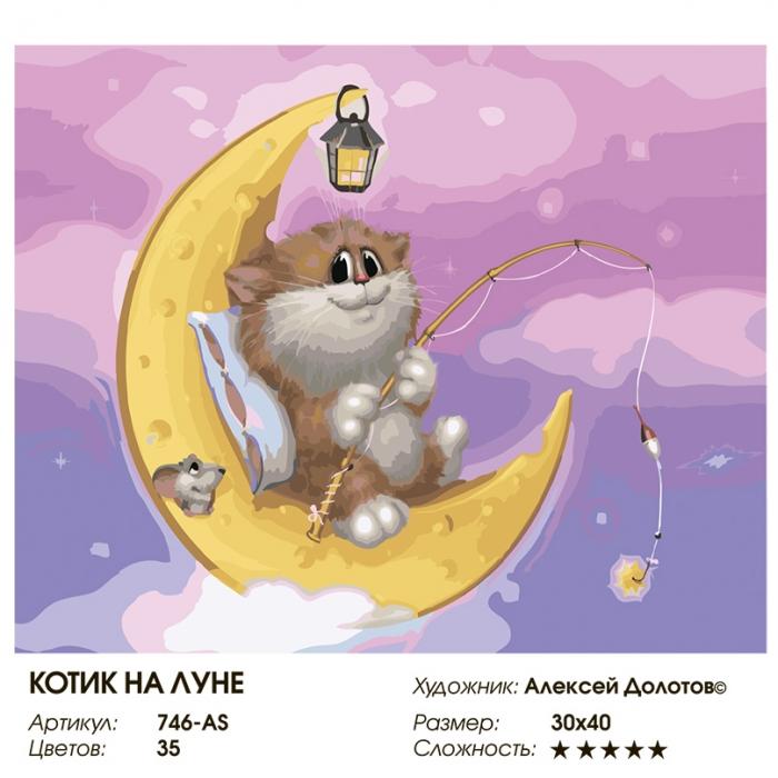 Картины по номерам Белоснежка арт.БЛ.746-AS Котин на луне 30х40 см