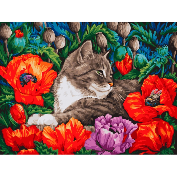 Живопись на картоне Белоснежка арт.БЛ.3183-CS Кот в маках 30х40 см