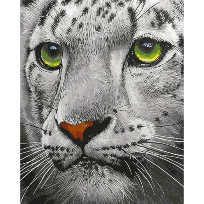 Картины по номерам Белый тигр ME1072 30х40 тм Цветной